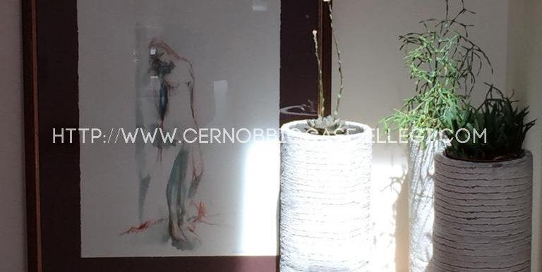 Sira Centro10